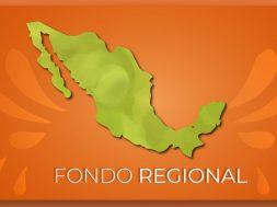"""presupuesto del """"Fondo Regional"""""""