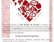 Campaña SCLC