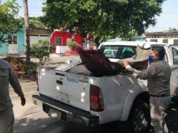 Descacharrización Tapachula