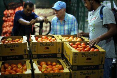 exportación productos agropecuarios