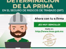 DECLARACIÓN DE LA PRIMA
