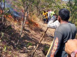 incendios forestales Chiapas