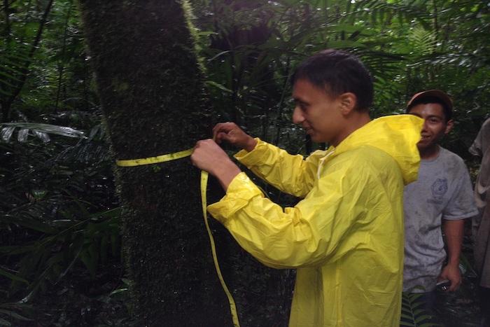 Colabora UNICACH en monitoreo de la Selva Lacandona