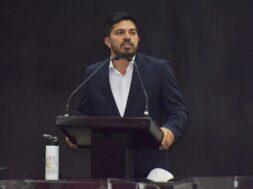 diputado Luis Fernando Cruz Cantoral