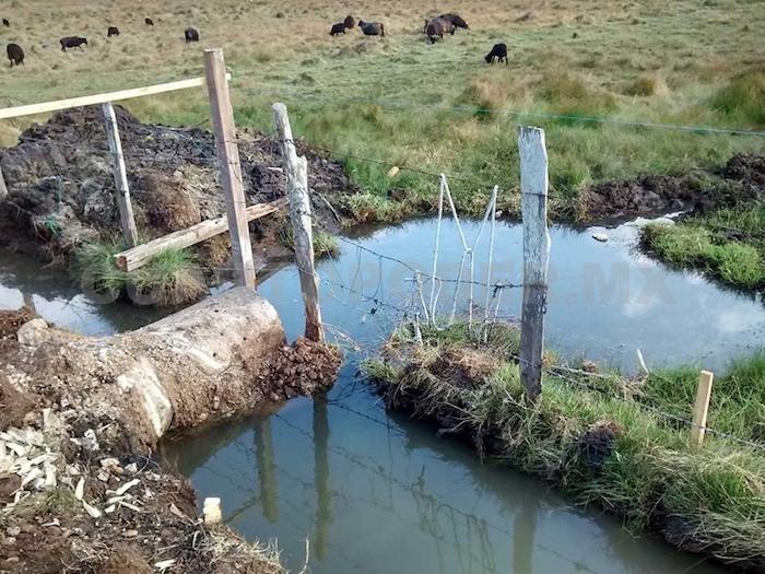 Destrucción de humedales amenaza futuro abasto de agua para San Cristóbal / En la Mira