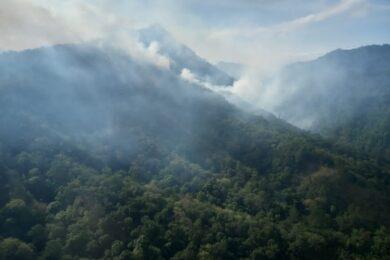 incendio forestal cañón del sumidero